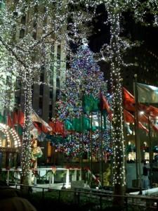 NYC_tree2